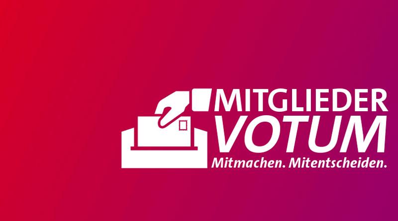 Mitgliedervotum 2013